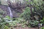 DSCN0137船木山の滝.jpg